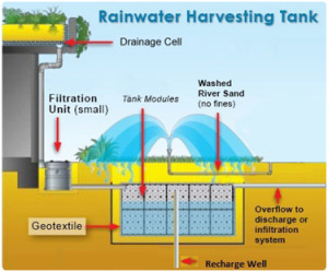 Rain Water Harvesting Case Study