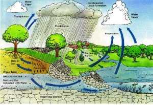 RAIN-WATER-HARVESTING-11