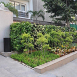 Green Wall at VLCC- Vasant Vihar- New Delhi