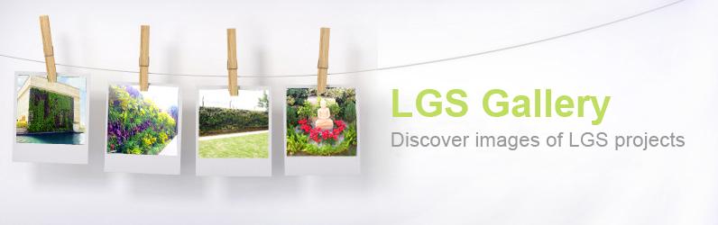 lgs gallery